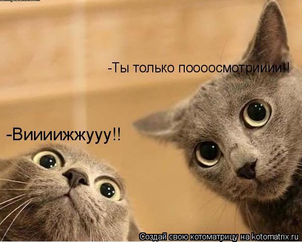 Котоматрица: -Ты только поооосмотрииии!! -Виииижжууу!!