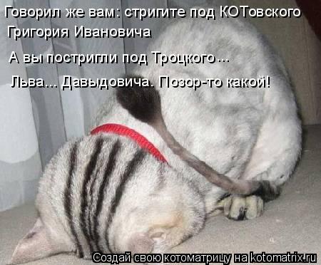 Котоматрица: Говорил же вам: стригите под КОТовского  Григория Ивановича  А вы постригли под Троцкого ... Льва... Давыдовича. Позор-то какой!