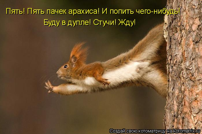 http://kotomatrix.ru/images/lolz/2009/06/10/53.jpg