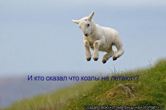 Котоматрица: И кто сказал что козлы не летают!?