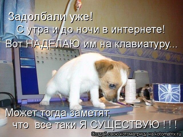 Котоматрица: Задолбали уже! С утра и до ночи в интернете! Вот НАДЕЛАЮ им на клавиатуру... Может тогда заметят, что  все таки Я СУЩЕСТВУЮ ! ! !