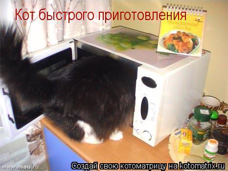 Котоматрица: Кот быстрого приготовления