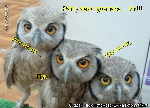 Котоматрица: Party явно удалась... Ик!!! Пук Икк-ик-ик... Икк-ик-ик...