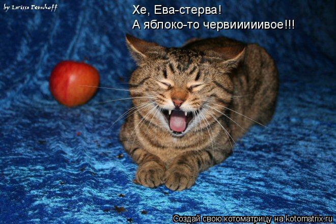Котоматрица: Хе, Ева-стерва! А яблоко-то червииииивое!!!