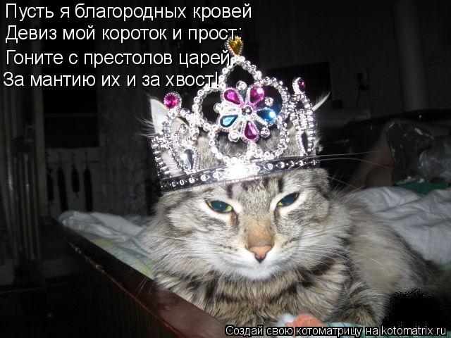 Котоматрица: Пусть я благородных кровей Девиз мой короток и прост : Гоните с престолов царей. За мантию их и за хвост!