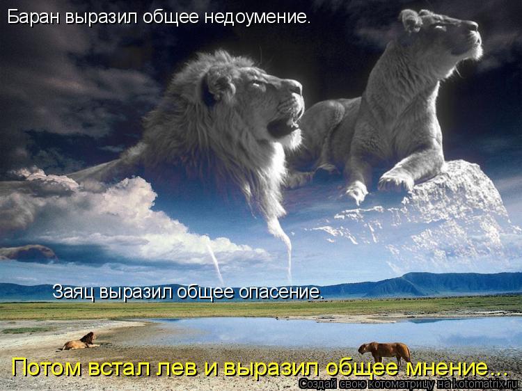 Котоматрица: Баран выразил общее недоумение.  Заяц выразил общее опасение.  Потом встал лев и выразил общее мнение...