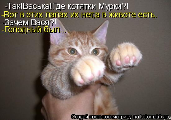 Котоматрица: -Так!Васька!Где котятки Мурки?! -Вот в этих лапах их нет,а в животе есть. -Зачем Вася?! -Голодный был...