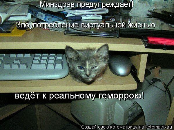 Котоматрица: Минздрав предупреждает!  Злоупотребление виртуальной жизнью  ведёт к реальному геморрою!