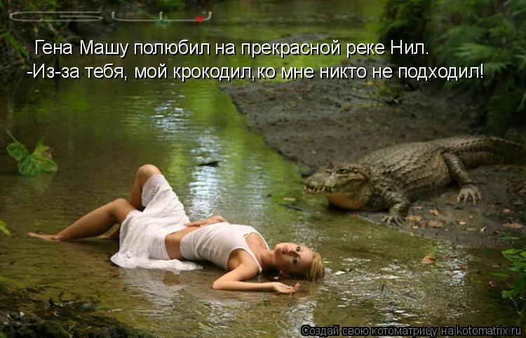 Котоматрица: Гена Машу полюбил на прекрасной реке Нил. -Из-за тебя, мой крокодил,ко мне никто не подходил!