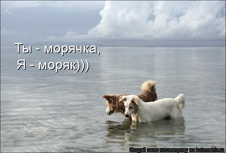 Котоматрица: Ты - морячка, Я - моряк)))