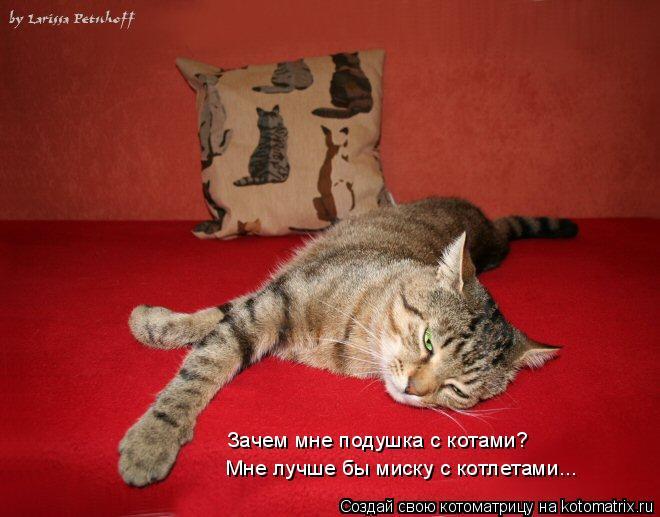 Котоматрица: Зачем мне подушка с котами? Мне лучше бы миску с котлетами...