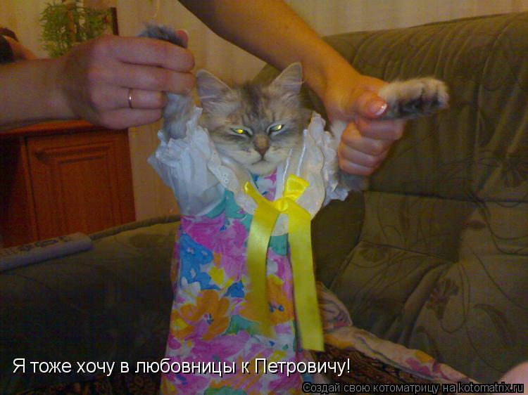 Котоматрица: Я тоже хочу в любовницы к Петровичу!