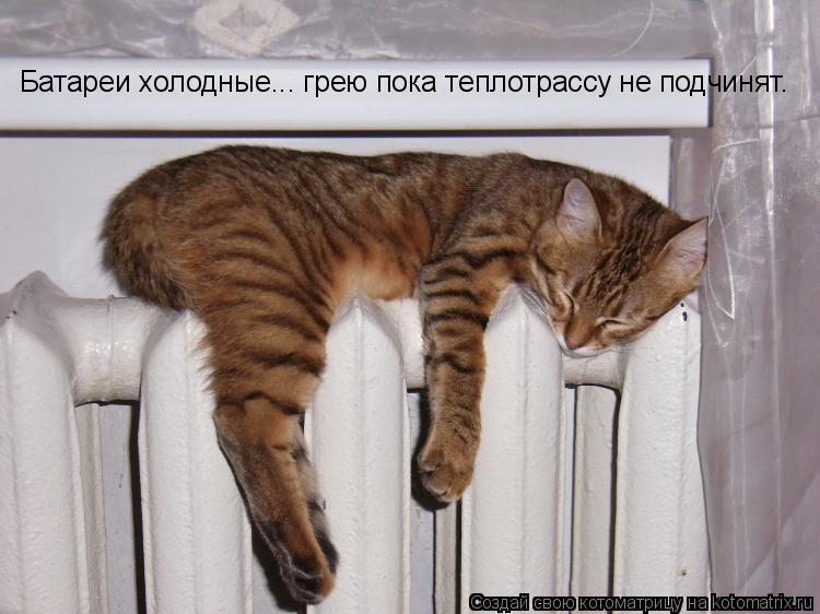 Котоматрица: Батареи холодные... грею пока теплотрассу не подчинят.