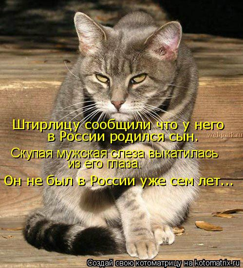 Котоматрица: Штирлицу сообщили что у него  в России родился сын. Скупая мужская слеза выкатилась из его глаза. Он не был в России уже сем лет...