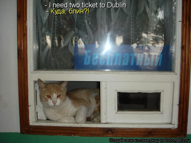 Котоматрица: - I need two ticket to Dublin  - Куда, блин?!