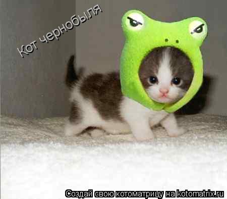 Котоматрица: Кот чернобыля