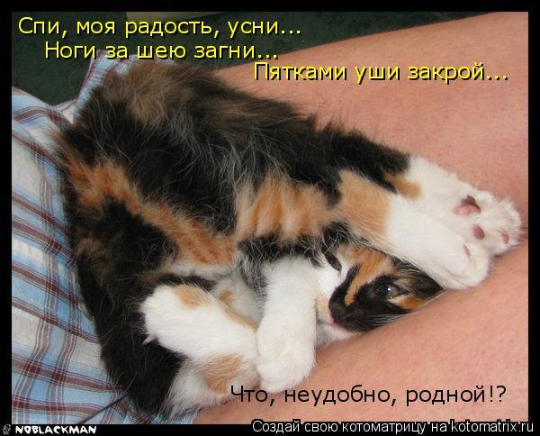 Котоматрица: Спи, моя радость, усни...  Ноги за шею загни... Что, неудобно, родной!? Пятками уши закрой...