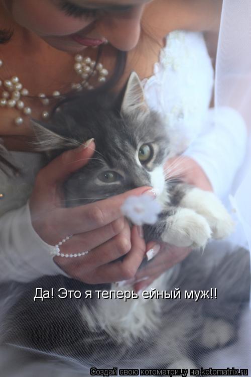 Котоматрица: Да! Это я теперь ейный муж!!