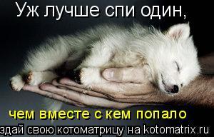 Котоматрица: Уж лучше спи один, чем вместе с кем попало