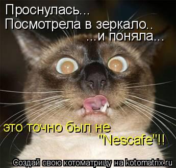 """Котоматрица: Проснулась... Посмотрела в зеркало.. ...и поняла... это точно был не  """"Nescafe""""!!"""