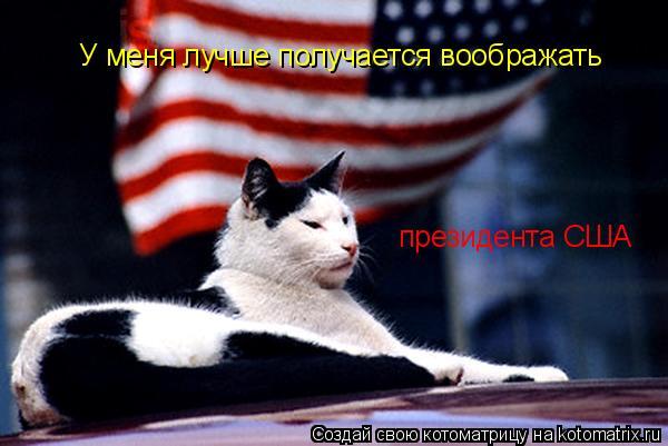 Котоматрица: У меня лучше получается воображать президента США
