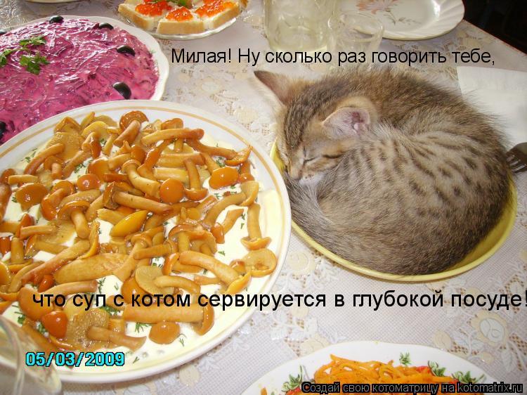 Котоматрица: Милая! Ну сколько раз говорить тебе,  что суп с котом сервируется в глубокой посуде!
