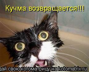 Котоматрица: Кучма возвращается!!!