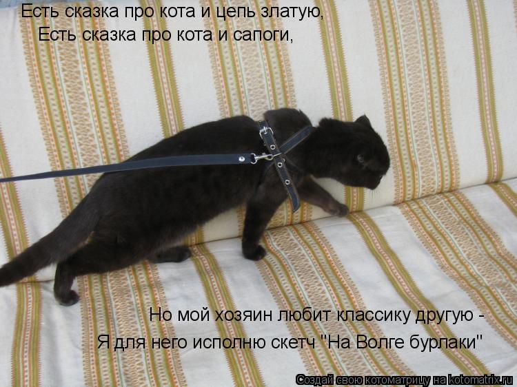 """Котоматрица: Есть сказка про кота и цепь златую, Есть сказка про кота и сапоги, Но мой хозяин любит классику другую -  Я для него исполню скетч """"На Волге бу"""