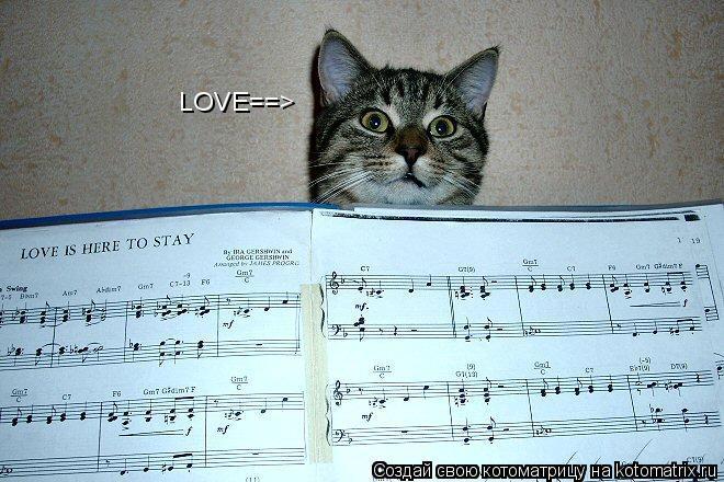 Котоматрица: LOVE==>