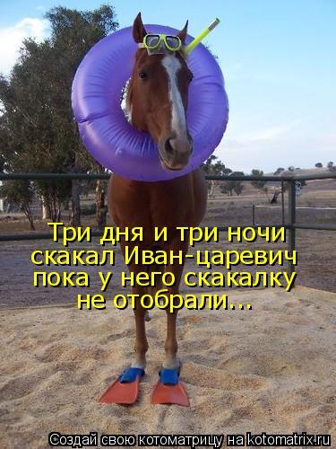Котоматрица: Три дня и три ночи скакал Иван-царевич пока у него скакалку не отобрали...