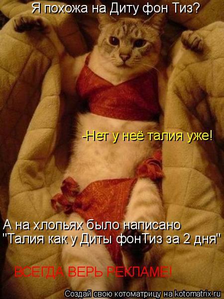 """Котоматрица: Я похожа на Диту фон Тиз? -Нет у неё талия уже! А на хлопьях было написано """"Талия как у Диты фонТиз за 2 дня"""" ВСЕГДА ВЕРЬ РЕКЛАМЕ!"""