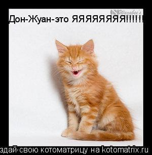 Котоматрица: Дон-Жуан-это ЯЯЯЯЯЯЯЯ!!!!!!!!