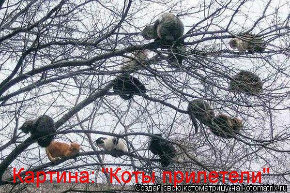 "Котоматрица: Картина: ""Коты прилетели"""