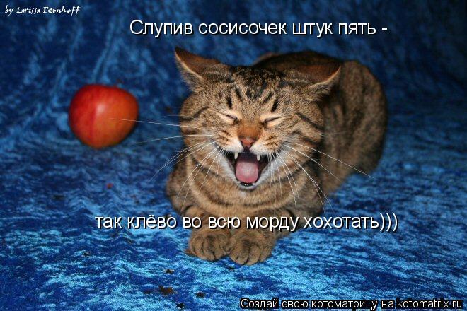 Котоматрица: Слупив сосисочек штук пять - так клёво во всю морду хохотать)))