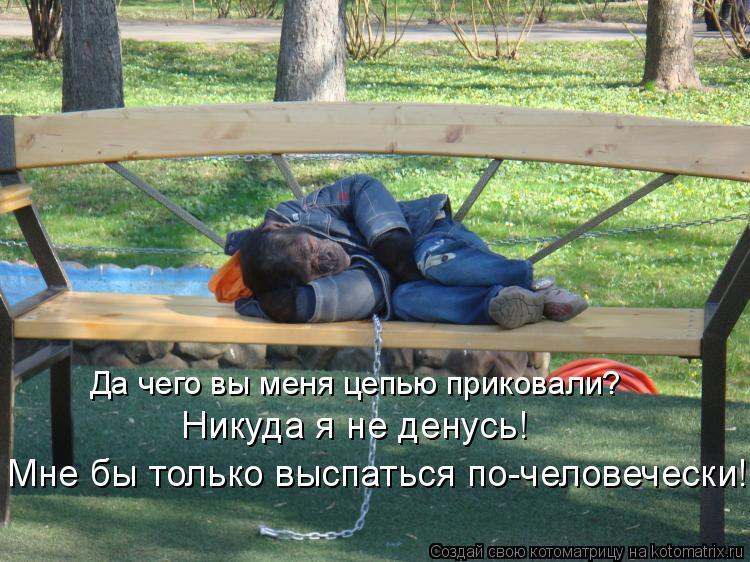 Котоматрица: Да чего вы меня цепью приковали? Никуда я не денусь! Мне бы только выспаться по-человечески!...