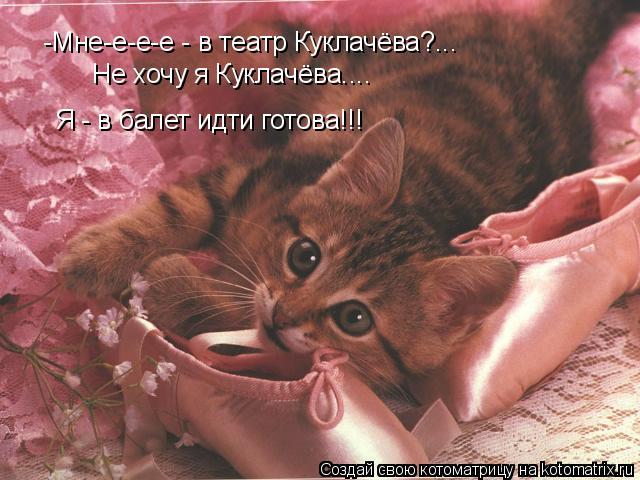 Котоматрица: -Мне-е-е-е - в театр Куклачёва?... Я - в балет идти готова!!! Не хочу я Куклачёва....