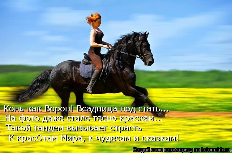 Котоматрица: Конь как Ворон! Всадница под стать... На фото даже стало тесно краскам... Такой тандем вызывает страсть К красОтам Мира, к чудесам и сказкам!