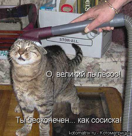 Котоматрица: О, великий пылесос!  Ты бесконечен... как сосиска!
