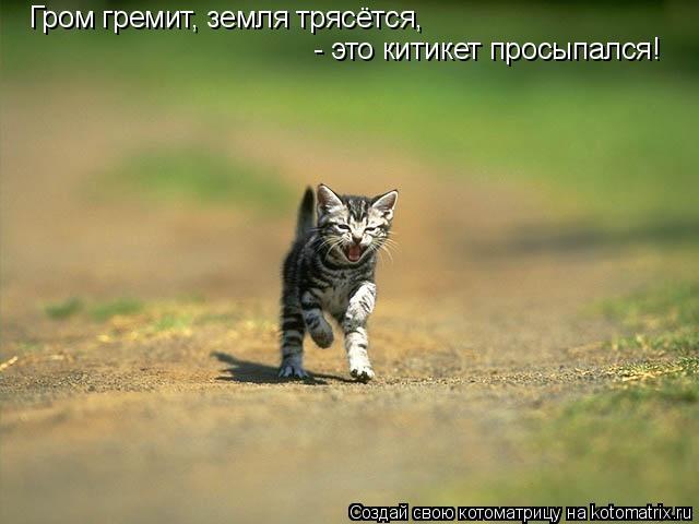 Котоматрица: Гром гремит, земля трясётся,  - это китикет просыпался!