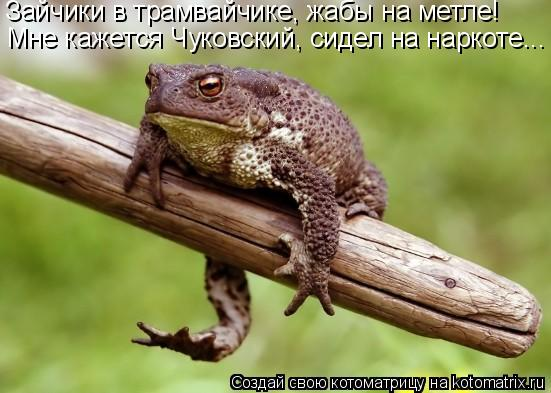 Котоматрица: Зайчики в трамвайчике, жабы на метле! Мне кажется Чуковский, сидел на наркоте...