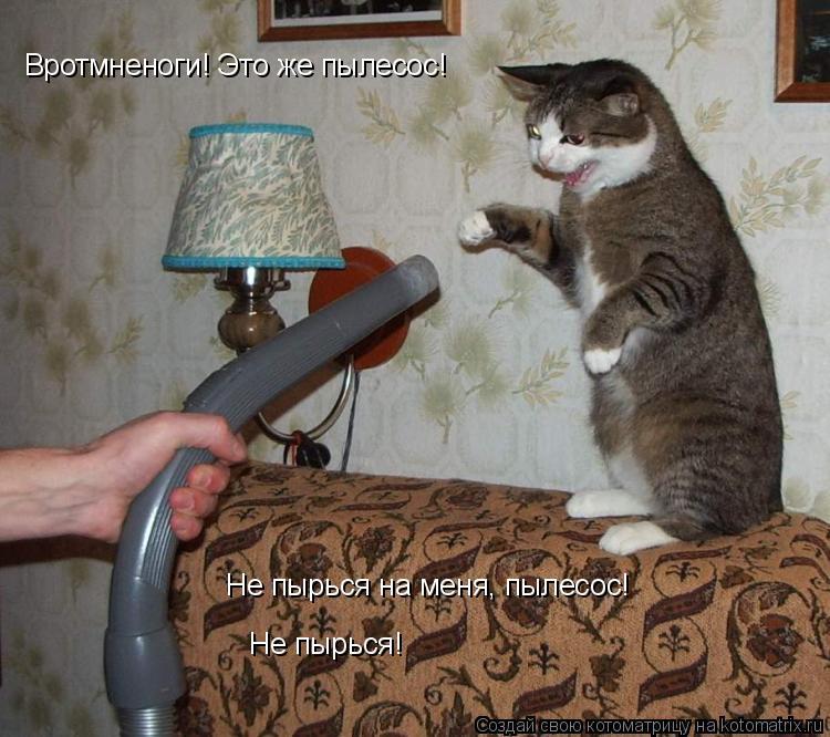 Котоматрица: Вротмненоги! Это же пылесос! Не пырься на меня, пылесос! Не пырься!