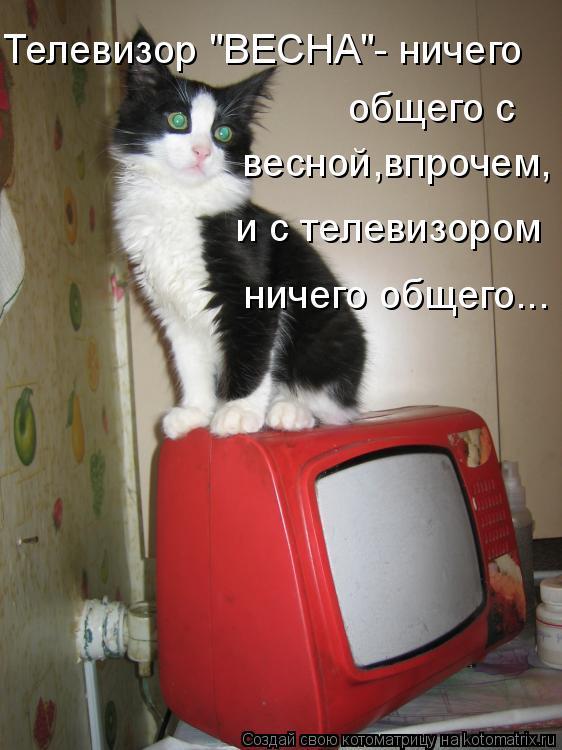 """Котоматрица: Телевизор """"ВЕСНА""""- ничего  общего с  весной,впрочем, и с телевизором ничего общего..."""