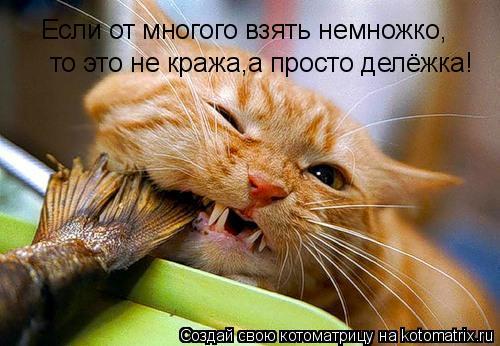 Котоматрица: Если от многого взять немножко, Если от многого взять немножко, то это не кража,а просто делёжка!