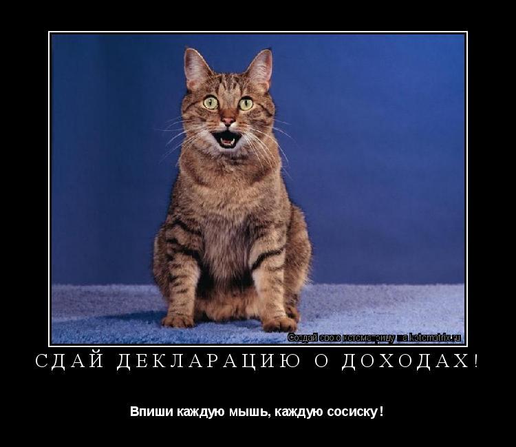 Котоматрица: сдай декларацию о доходах! Впиши каждую мышь, каждую сосиску !