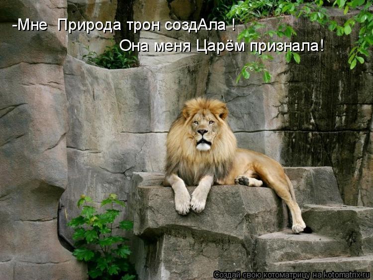 Котоматрица: -Мне  Природа трон создАла ! Она меня Царём признала!