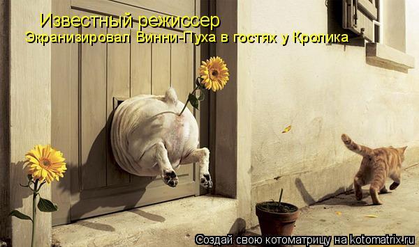 Котоматрица: Известный режиссер Экранизировал Винни-Пуха в гостях у Кролика