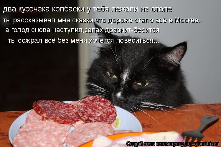 Котоматрица: два кусочека колбаски у тебя лежали на столе ты рассказывал мне сказки,что дороже стало всё в Москве... а голод снова наступил,запах дразнит-