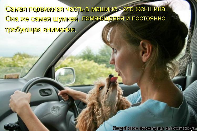 Котоматрица: Самая подвижная часть в машине - это женщина.  Она же самая шумная,  ломающаяся и постоянно  требующая внимания.