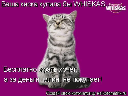 Котоматрица: Ваша киска купила бы WHISKAS Бесплатно жрать хочет, а за деньги, млин, не покупает! ...