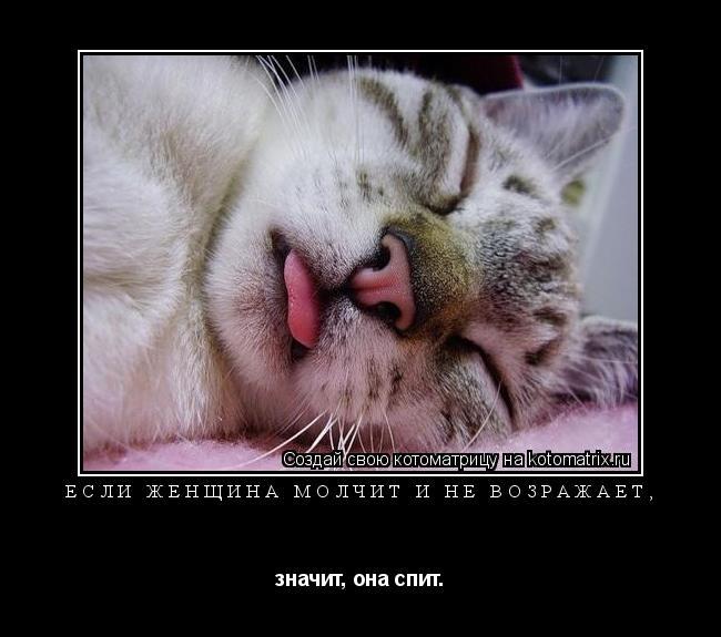 Котоматрица: Если женщина молчит и не возражает,  значит, она спит.